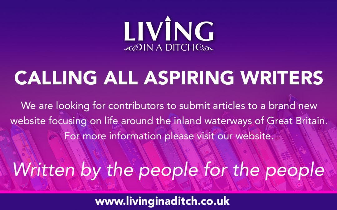 Well That Didn't Take Long – Living In A Ditch Is Launched